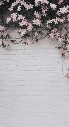 42 Classy Unique Wall Background You Must Have Well-decorated walls . - 42 Classy Unique Wall Background You Must Have Well-decorated walls are one of the most - Flower Background Wallpaper, Flower Phone Wallpaper, Cute Wallpaper Backgrounds, Flower Backgrounds, Pretty Wallpapers, Aesthetic Iphone Wallpaper, Nature Wallpaper, Mobile Wallpaper, Aesthetic Wallpapers
