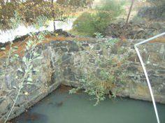 Ziquítaro, calles y paisajes, 50. Mañanita del día 12. Aquí nace el agua,hay otro venero pero otros que brotaban enlas aguas, quedaron tapad...