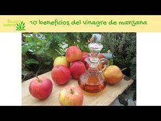 10 beneficios del vinagre de manzana ⋆ Tu cura natural