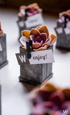 Industrial and rustic combine for this one of a kind wedding favor. Add a touch of life to your wedding guests' thank you gift.