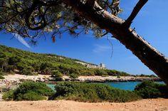 Porto Selvaggio, the most beautiful oasis in Salento | ThePuglia - Real Estate