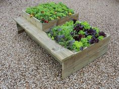 Raised vegetable beds - The 21 inch and 14 inch 2 tier planter is perfect for a broad range of vegetables.