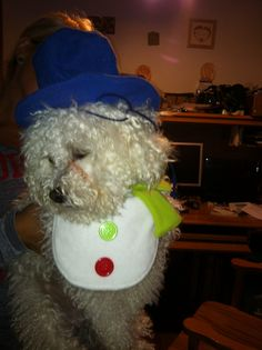 Mom why do I have to wear this stupid snowman costume!