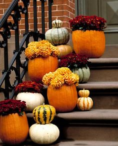 Fall mums in pumpkins.this makes for great Halloween or Thanksgiving decor. Halloween Porch Decorations, Thanksgiving Decorations, Holiday Decor, Outdoor Thanksgiving, Outdoor Decorations, Autumn Decorations, Seasonal Decor, Happy Thanksgiving, Thanksgiving Photos