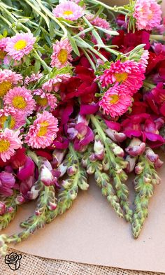 love these mixed flowers in various shades of pink and red and purple