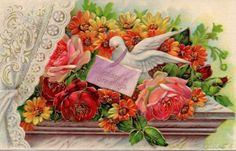 Dove-with-Roses-amp-Daisies-and-Lace-Curtain-Birthday-Embossed-Vintage-Postcard