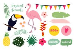 I would like to introduce you **Summer Paradise** – the Summer tropical graphic collection. I hope that these cute hand drawn graphic elements, seamless patterns and cards would be ideal for decoration of your blog, holiday projects, greeting cards, invitations, tags, presentations, handmade crafts or scrapbooking. If you like it, please check also Summer Paradise set https://thehungryjpeg.com/product/16068-summer-paradise-