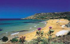 Best beaches: Ramla Bay  │ #gozo gozovillarentals.com