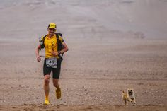 """It all began during this summer's 4 Deserts Gobi March 2016, a 6-day foot race weaving through China's largest desert. Leonard was one of 101 human participants — but he soon found himself joined by a different sort of competitor. """"On Day 2, I was at the start line for the race stage and she …"""