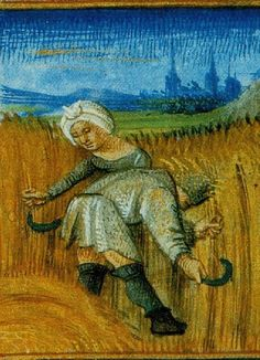 A Year on the Medieval Farm - Medievalists.net