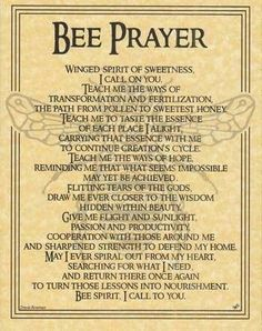 "This parchment poster offers a prayer to the spirit of the Bee, celebrating the noble spirit of this tiny, yet vital, creature and all that it has to teach us. Size: 8 1/2"" x 11"""