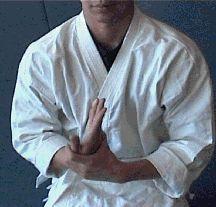 Aikido basics Aikido Martial Arts, Hand To Hand Combat, Martial Artist, Judo, Self Defense, Jiu Jitsu, Karate, Healthy Living, Tutorials