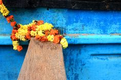 Sacred is in ordinary. #Goa, #India #MotherIndia. February, 2014 #photography #detail #flower #life #earth #love #live