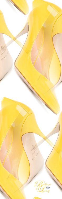 Brilliant Luxury by Emmy DE ♦ Sergio Rossi 'Godiva' pumps #shoeart
