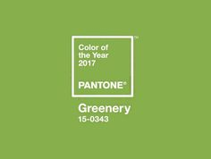 """El Instituto del Color Pantone ha decidido que el verde teñirá el año 2017. La """"autoridad global del color"""" -como ellos mismos se denominan- ha anunciado que el Pantone 15-0343 (es"""