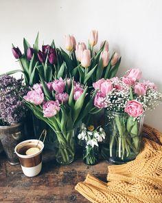 Good morning, sunny Thursday... tulips #moodofmytable . . . . . . . . . . . . #tulipseason #petalsandprops #inspiredbypetals #thathyggefeeling #teaandseasons #tea_cup_tuesday #antique_r_us #astilllifestyle #sweaterweather #colorcolourlovers #loves_vscolifestyle #sweatherweather #inspiredbyflowers #underthefloralspell #darlingdaily #myeverydaymagic #inspiremyinstagram #tv_lifestyle #9vaga_shabbysoft9 #click_dynamic #chasinglight #mymomentwithflowers #flowersofinstagram…