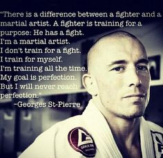 Attached is Georges St. Pierre describing the difference between a fighter and martial artist. What are you? #quantummartial
