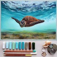 Черепашка пастелью soft pastel pastel painting pastel drawing пастель сухая пастель картина пастелью