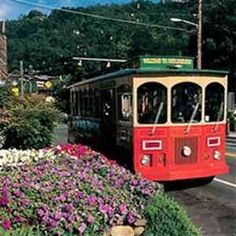 Take a trolley ride all around Gatlinburg! They also run from Pigeon Forge to Gatlinburg and back. Gatlinburg Vacation, Gatlinburg Tennessee, Gatlinburg Cabins, Gatlinburg Attractions, Tennessee Vacation, Vacation Destinations, Vacation Spots, Vacations
