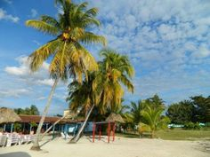 Beach in Cuba Cuba News, Cuba Travel, Need To Know, Travel Inspiration, Nice, Beach, Places, Color, The Beach