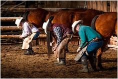 Montana Bunkhouses Working Ranch Vacations