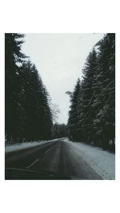 Snow in March   #picture#photography#snow#march