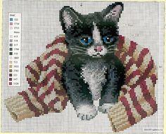 Cross Stitch Cat and Sweater