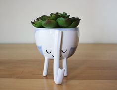 Three-legged Elephant Planter in Baby Blue - stilts / with legs - animal - light blue- handmade, Canadian pottery by Beardbangs on Etsy https://www.etsy.com/listing/223484119/three-legged-elephant-planter-in-baby