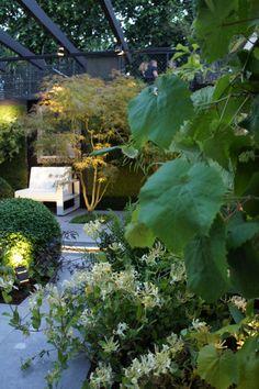 Jardins Jardin aux Tuileries en 2010 - Partenariat avec Extérieurs design - Conception et réalisation : Didier Danet Photos de Nathalie Pasquel