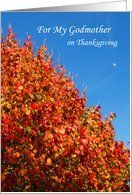 Godmother Thanksgiving Card -- Autumn Scene Card by Greeting Card Universe. $3.00. 5 x 7 inch premium quality folded paper greeting card. Thanksgiving greeting cards & photo cards are available at Greeting Card Universe. Thanksgiving cards are always more memorable when they are sent the old-fashioned way. Turn to Greeting Card Universe for all your Thanksgiving card needs. This paper card includes the following themes: Kathy Henis, thanksgiving, and card. Set your p...