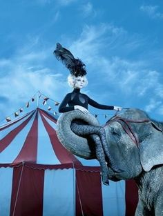 Fashion pictures or video of The Chicest Show On Earth - Jessica Stam & Gabriel Aubrey; in the fashion photography channel 'Photo Shoots'. Dark Circus, Circus Art, Circus Clown, Circus Theme, Image Circus, Creepy Circus, Circus Train, Pantomime, Clowns