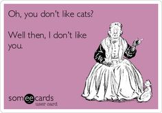 Oh, you don't like cats? Well then, I don't like you.