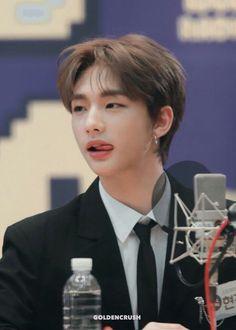 stop that young man! stop that young man! Sung Lee, Idole, Kids Wallpaper, Wattpad, Drama Queens, Jolie Photo, Crazy Kids, Lee Know, My Prince