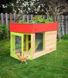 GARDEN roof chicken COOP! Adorable! If only I was able to have chickens in my back yard..
