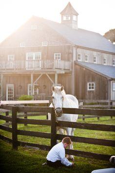 That barn.=home, venue, recording/music studio, dance studio, photography studio + horse. done <3