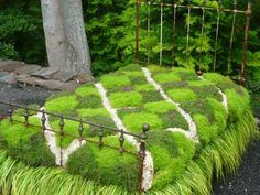 """If you want to make a bold statement in your garden. think """"flower bed"""" in the most literal sense. An antique wrought iron bed frame would be the perfect home for some bright green grass (and a great place to relax with a good book). by Ирина Дубровская Garden Spaces, Garden Beds, Garden Art, Unique Gardens, Amazing Gardens, Wrought Iron Bed Frames, Garden Design Magazine, Fleur Design, Moss Garden"""