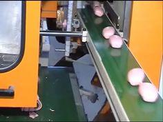 Soap Machines & Production Line of soap bar form soap noodles - YouTube