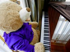 Today the bear has been tuning the piano ready for our #SpringOpenDay on April 8th 2017!