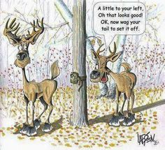 Deer Hunting Memes, Funny Hunting Pics, Hunting Signs, Whitetail Hunting, Funny Deer, Funny Minion Memes, Funny Animal Jokes, Funny Cartoons, Animal Memes