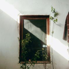 Make Solar Energy Work For You. Knowing what you're doing when it comes to solar energy can feel like quantum physics, but it's not that complex. Jolie Photo, Morning Light, Light And Shadow, Aesthetic Pictures, Nature, Artsy, Things To Come, Windows, Wallpaper