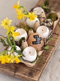 You can easily make candles and small vases for flowers from egg shells . - You can easily make candles and small vases for flowers from egg shells. I explain how to do this i - Decoration Restaurant, Decoration Photo, Seasonal Decor, Holiday Decor, Easter Printables, Deco Table, Egg Shells, Kids Decor, Candle Making