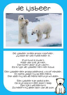 Neo, Polar Bear, Badges, Safari, Animals, Dutch, Craft, Winter Time, Poland