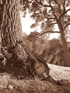 Not as pretty as my own Mando, but a neat picture, nonetheless. Music Is My Escape, Music Is Life, Banjo, Ukulele, Sound Of Music, My Music, Music Gadgets, Mountain Music, What Is Life About