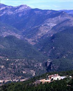 ↠ Armónica convivencia entre naturaleza y #arquitectura ↞ Refugio forestal en monte Altis: pureza escondida #proyecto #equipamiento #VillahermosaDelRío #Castellón