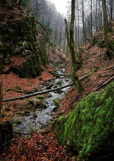 10 tiesňav a kaňonov Slovenska, ktoré by si mal aspoň | Interez.sk River, Landscape, Outdoor, Outdoors, Scenery, Outdoor Games, The Great Outdoors, Corner Landscaping, Rivers