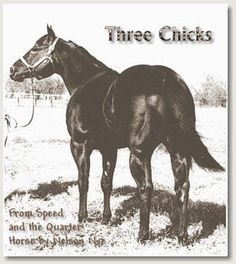 Three Chicks - One of the Most Consistent Performers on the Quarter tracks - AQHA Champion - Leading Quarter Horse Racing Sire.