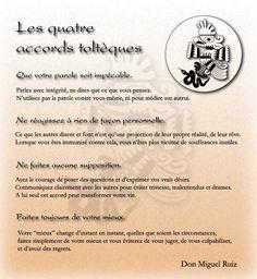Les 4 accords toltèques : Appréhender le monde plus sereinement | Lifestyle Conseil
