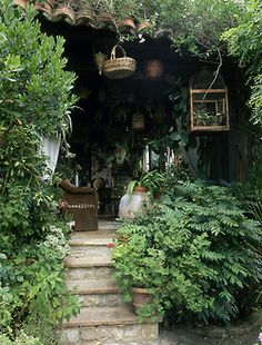 love all the vines and bushes surrounding the porch entrance.