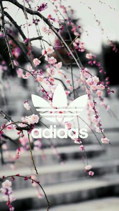 Imagem de adidas, wallpaper, and pink Adidas Backgrounds, Cute Backgrounds, Wallpaper Backgrounds, Iphone Wallpaper, Homescreen Wallpaper, Nike Wallpaper, Tumblr Wallpaper, Cool Wallpaper, Wallpaper For Your Phone