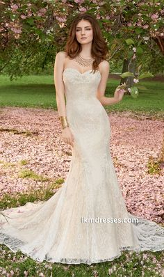 http://www.ikmdresses.com/Strapless-Lace-Wedding-Dress-with-Chapel-Train-p87597